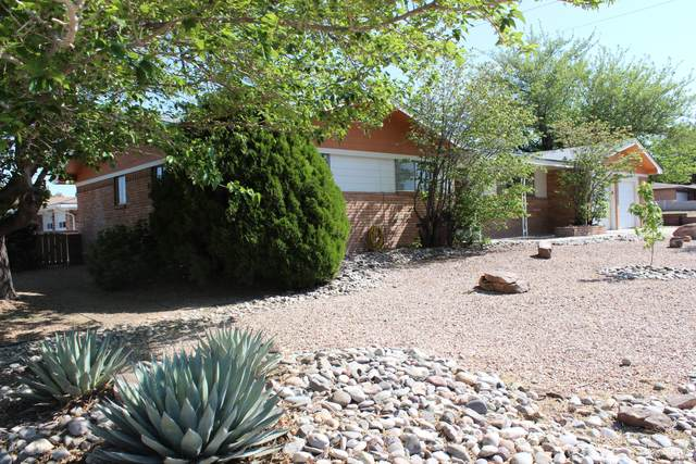 8325 La Camila Road NE, Albuquerque, NM 87110 (MLS #996481) :: Sandi Pressley Team