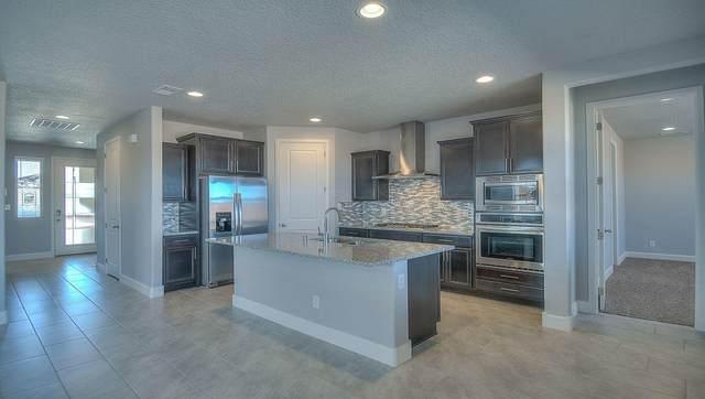 4420 Skyline Loop NE, Rio Rancho, NM 87144 (MLS #997035) :: Sandi Pressley Team