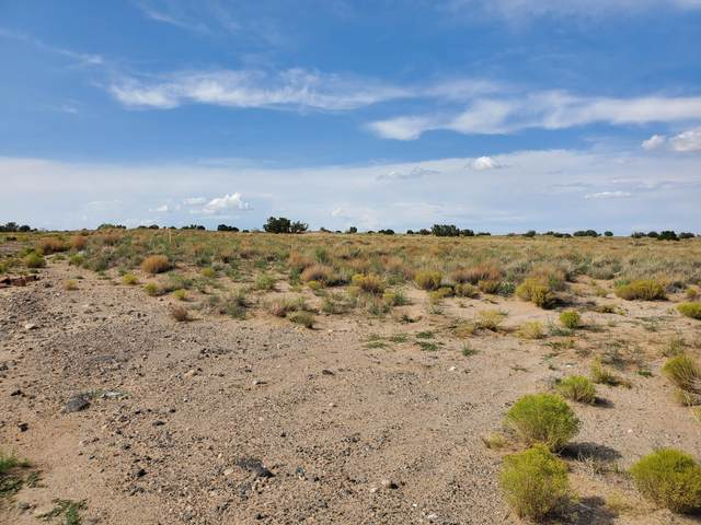 Rosa Parks Road NW, Albuquerque, NM 87120 (MLS #997060) :: Campbell & Campbell Real Estate Services