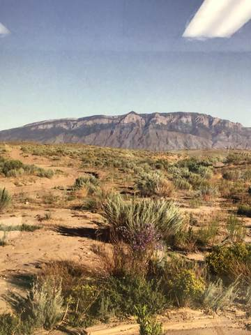 0 Unknown, Los Lunas, NM 87026 (MLS #997061) :: Campbell & Campbell Real Estate Services