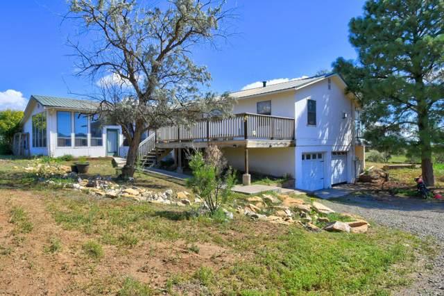 12 Lynch Trail, Edgewood, NM 87015 (MLS #998930) :: Berkshire Hathaway HomeServices Santa Fe Real Estate