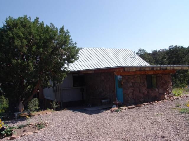 26 Wild Horse Road, Datil, NM 87821 (MLS #999484) :: Sandi Pressley Team