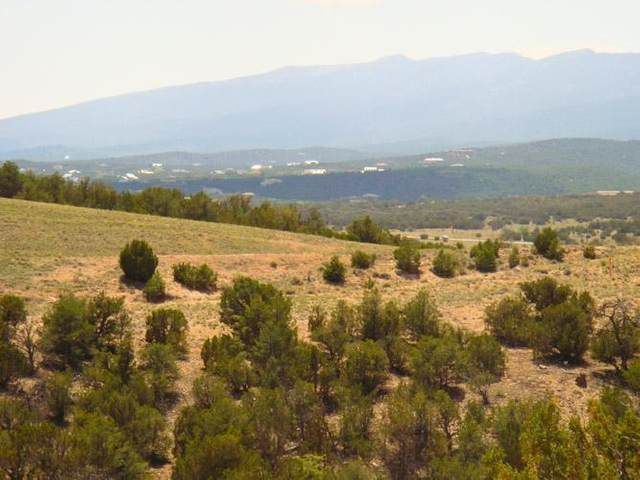20 Stagecoach Trail, Sandia Park, NM 87047 (MLS #734116) :: The Bigelow Team / Red Fox Realty