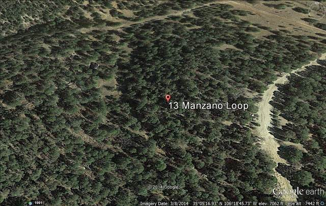 13 Manzano Loop, Tijeras, NM 87059 (MLS #767270) :: The Buchman Group