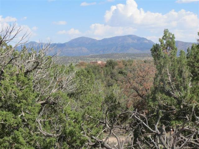 0 Pinon Park Trail, Sandia Park, NM 87047 (MLS #768774) :: Campbell & Campbell Real Estate Services