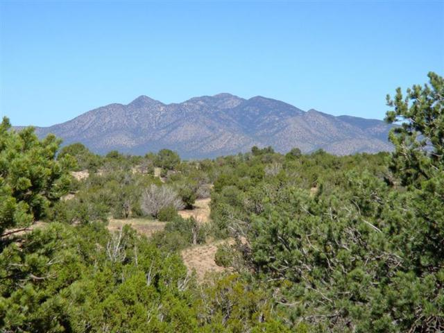 Lot 53 Turquoise Drive, Sandia Park, NM 87047 (MLS #770684) :: Campbell & Campbell Real Estate Services