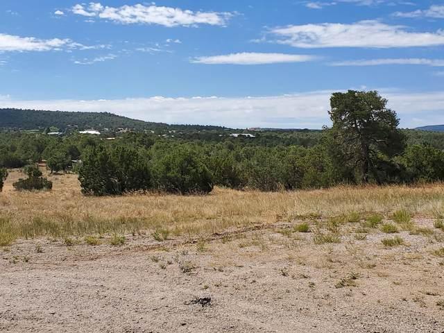 Sedillo Hill Road, Tijeras, NM 87059 (MLS #802851) :: Keller Williams Realty