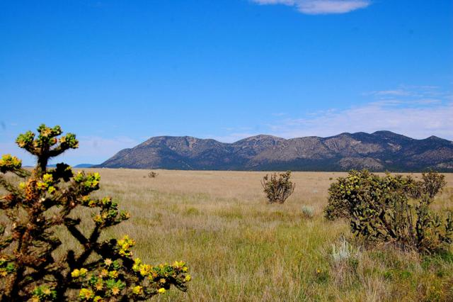 Rvs Ranch, Edgewood, NM 87015 (MLS #837178) :: Campbell & Campbell Real Estate Services