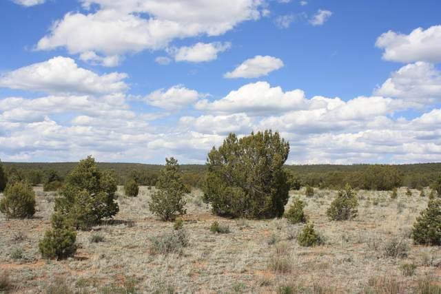 450 Pine Meadows Unit 4, Ramah, NM 87321 (MLS #841039) :: Keller Williams Realty