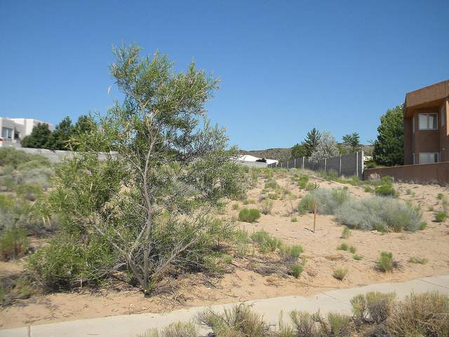 6803 Tamarisk Place NW, Albuquerque, NM 87120 (MLS #844112) :: The Buchman Group