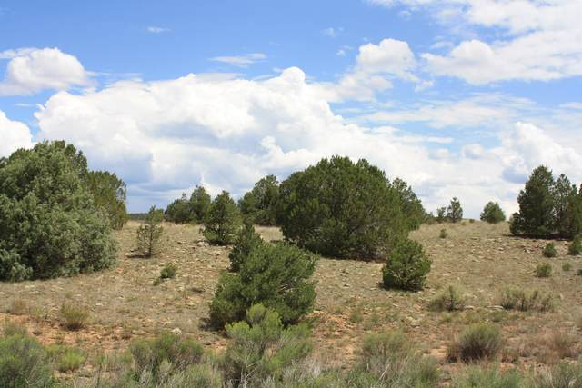 398-399 Pine Meadows Unit 4, Ramah, NM 87321 (MLS #873365) :: The Bigelow Team / Red Fox Realty