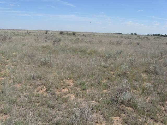 Robert Dr, Estancia, NM 87016 (MLS #891256) :: Campbell & Campbell Real Estate Services