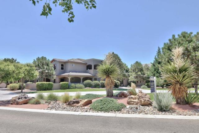 9412 Black Farm Lane NW, Albuquerque, NM 87114 (MLS #891385) :: Your Casa Team