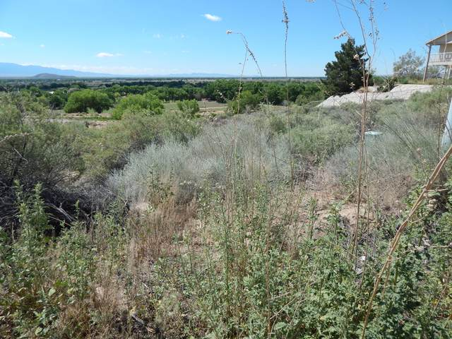 Valley View Drive, Los Lunas, NM 87031 (MLS #892379) :: Campbell & Campbell Real Estate Services