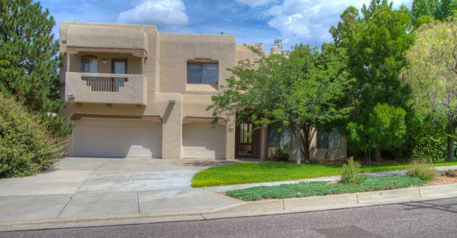 12515 Crested Moss Road NE, Albuquerque, NM 87122 (MLS #899511) :: Campbell & Campbell Real Estate Services