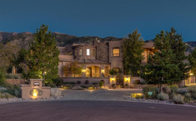 13512 Desert Zinnia Court NE, Albuquerque, NM 87111 (MLS #902775) :: Rickert Property Group