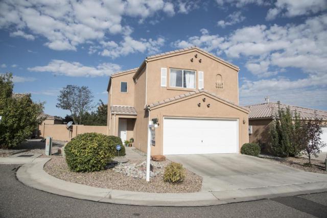 7209 Villa Tulipan NE, Albuquerque, NM 87113 (MLS #903621) :: Your Casa Team