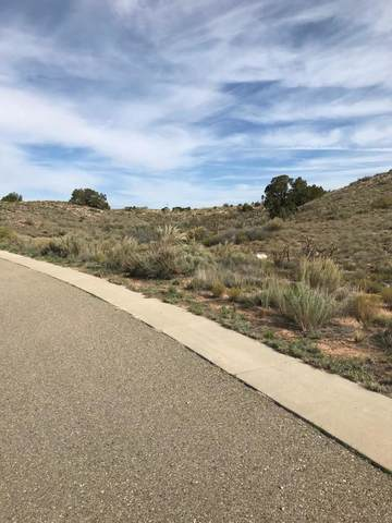 Rooster Point Road NE, Rio Rancho, NM 87144 (MLS #904345) :: The Buchman Group