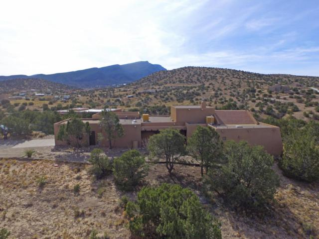 18 Plaza De Sonadores, Placitas, NM 87043 (MLS #906447) :: Your Casa Team