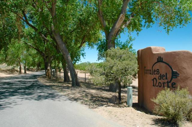Camino De Los Arboles, Corrales, NM 87048 (MLS #912959) :: Will Beecher at Keller Williams Realty