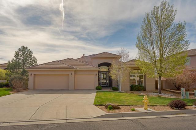 5919 Silver Leaf Trail NE, Albuquerque, NM 87111 (MLS #915753) :: Your Casa Team