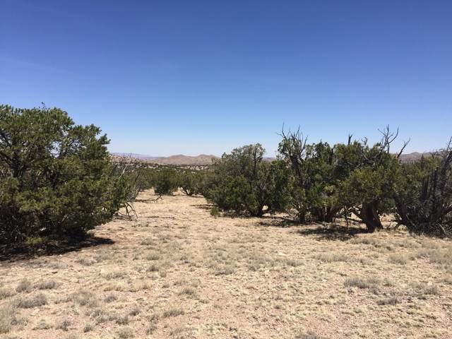 46 Camino Del Sueno, Magdalena, NM 87825 (MLS #917137) :: Sandi Pressley Team