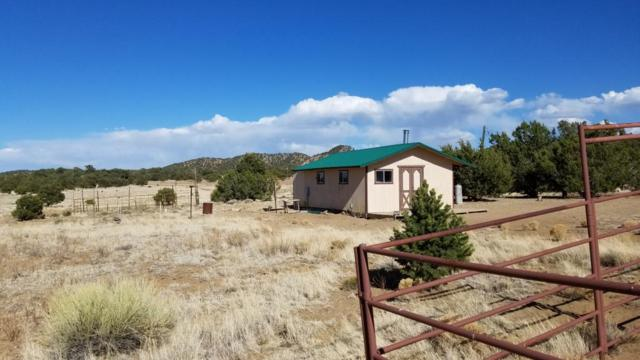 71 Mountain View Road, Pie Town, NM 87827 (MLS #917179) :: Campbell & Campbell Real Estate Services