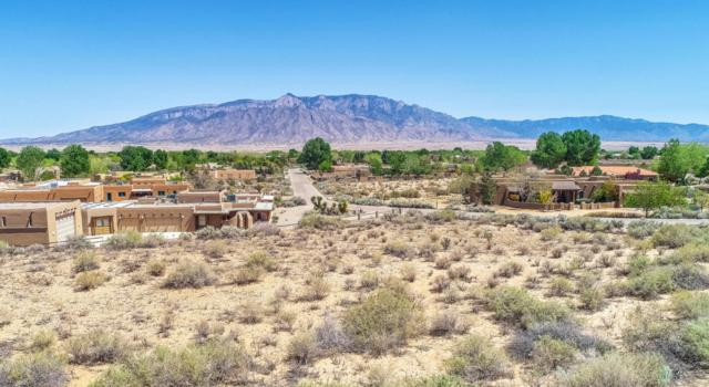 120 Thanes Way, Corrales, NM 87048 (MLS #917236) :: Campbell & Campbell Real Estate Services