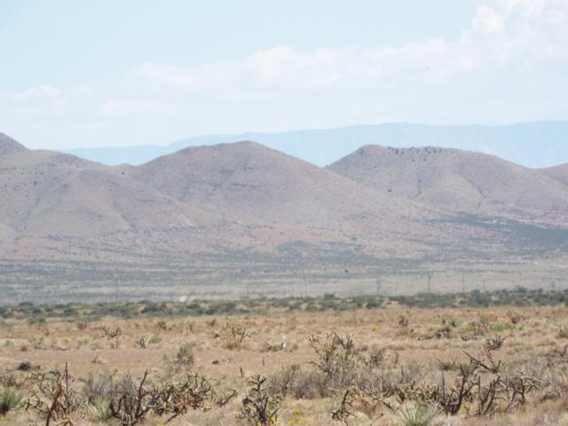 Lot 21 Willow Springs Ranch Road, San Antonio, NM 87832 (MLS #917600) :: The Bigelow Team / Realty One of New Mexico