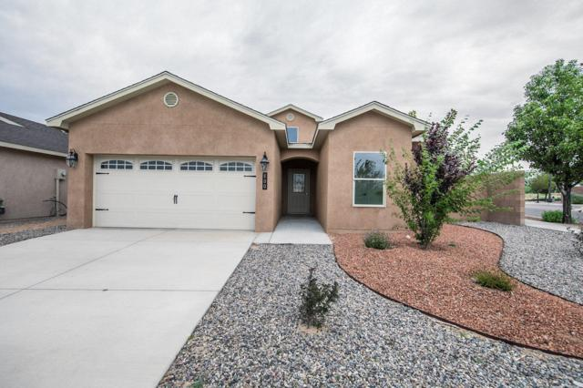 800 Firewheel Loop SW, Los Lunas, NM 87031 (MLS #918047) :: The Bigelow Team / Red Fox Realty