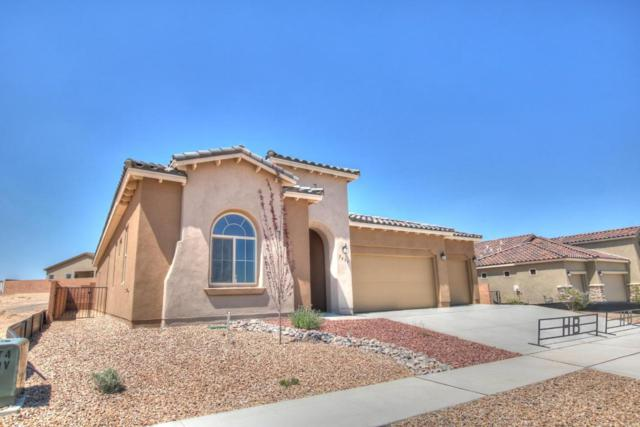 7439 Molas Road NW, Albuquerque, NM 87114 (MLS #919847) :: Campbell & Campbell Real Estate Services