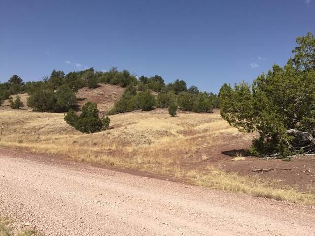 Lot 3 Sunflower Drive, Ramah, NM 87321 (MLS #919959) :: The Buchman Group