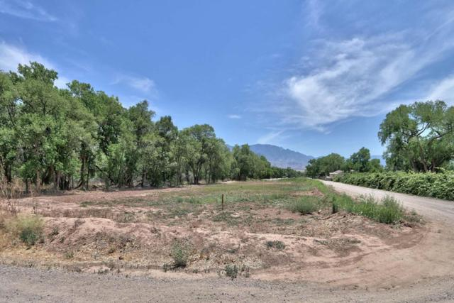 480 Toad Road, Corrales, NM 87048 (MLS #921205) :: Campbell & Campbell Real Estate Services