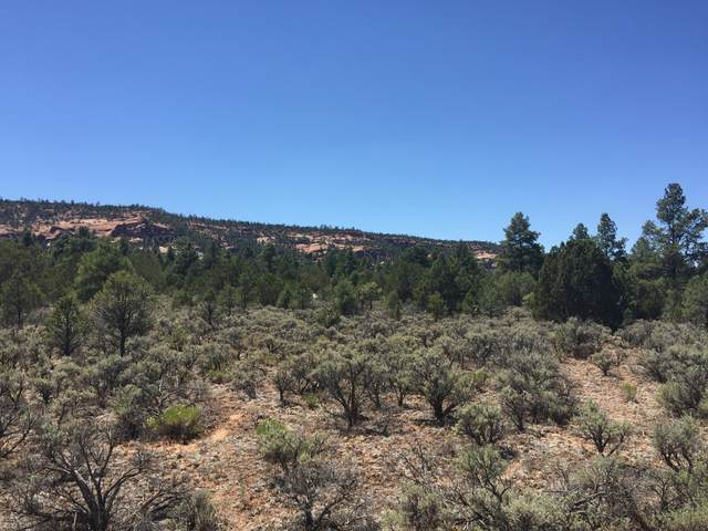 Lot 2 W Elk Drive, Ramah, NM 87321 (MLS #921643) :: The Bigelow Team / Red Fox Realty