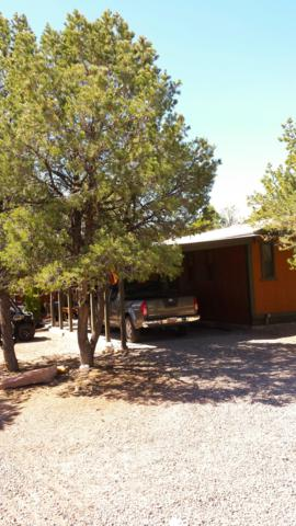 162A-B Homestead Trail, Datil, NM 87821 (MLS #922327) :: Silesha & Company