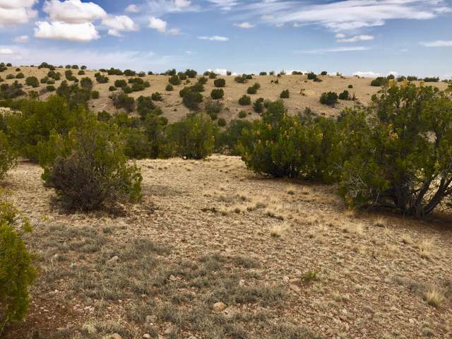 81 Pinon Springs Ranch, Magdalena, NM 87825 (MLS #923456) :: Campbell & Campbell Real Estate Services