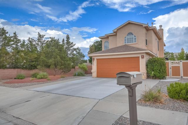 4475 Alpine Circle SE, Rio Rancho, NM 87124 (MLS #924112) :: Will Beecher at Keller Williams Realty