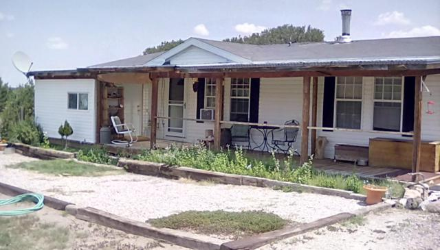 9 Buckhorn Circle, Pie Town, NM 87827 (MLS #925816) :: Campbell & Campbell Real Estate Services