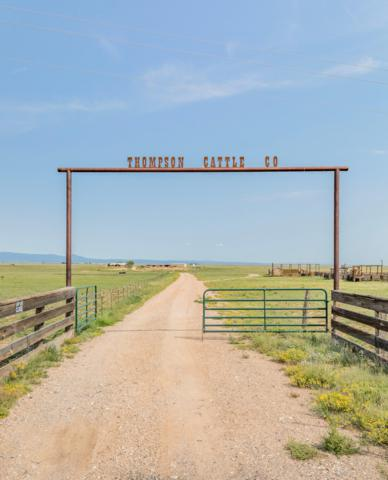 20902 Highway 60 East Road, Mountainair, NM 87036 (MLS #926378) :: Campbell & Campbell Real Estate Services