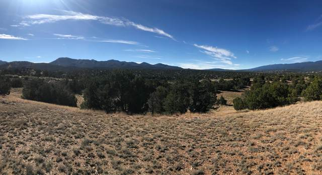 25 Stagecoach Trail, Sandia Park, NM 87047 (MLS #931009) :: Campbell & Campbell Real Estate Services