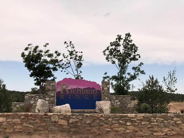 10 Valley Ridge Court, Tijeras, NM 87059 (MLS #932675) :: Sandi Pressley Team