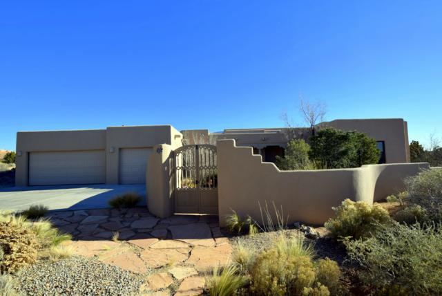 14 Desert Mountain Road, Placitas, NM 87043 (MLS #932957) :: The Bigelow Team / Realty One of New Mexico