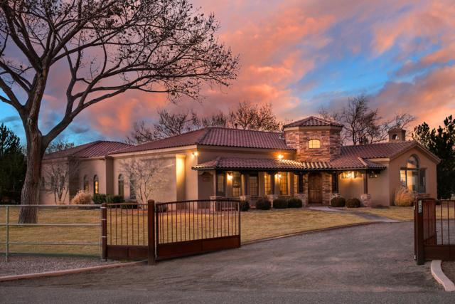 100 Camino De Los Arboles, Corrales, NM 87048 (MLS #936442) :: Campbell & Campbell Real Estate Services