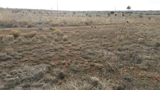 18 Horton Loop, Edgewood, NM 87015 (MLS #936525) :: Keller Williams Realty