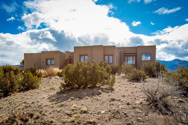 9 Dream Catcher Trail, Placitas, NM 87043 (MLS #937688) :: Your Casa Team