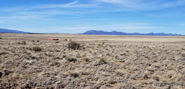 Tract 1 Broadmoor Road, Moriarty, NM 87035 (MLS #940201) :: The Buchman Group