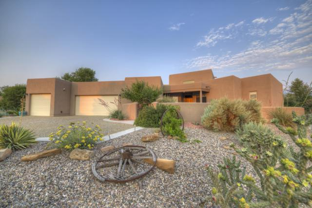 714 Paseo Sandia, Bernalillo, NM 87004 (MLS #941265) :: Campbell & Campbell Real Estate Services