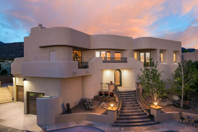 1446 Honeysuckle Drive NE, Albuquerque, NM 87122 (MLS #942184) :: Silesha & Company