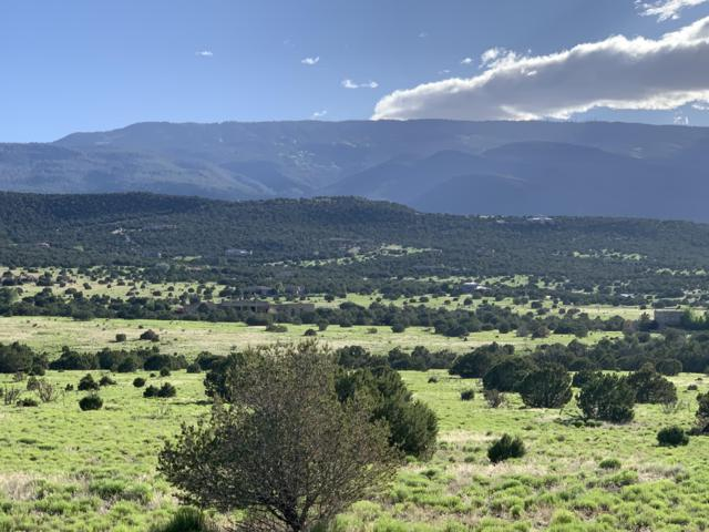 40 Camino Real, Sandia Park, NM 87047 (MLS #943619) :: Campbell & Campbell Real Estate Services