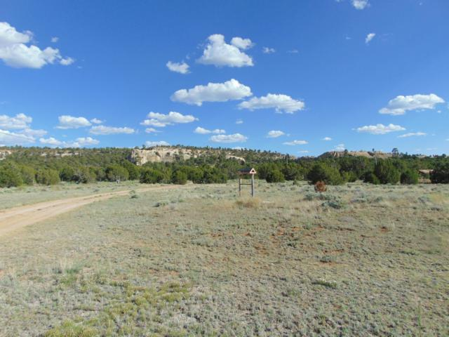 4268 Ice Caves Road, Ramah, NM 87321 (MLS #946301) :: Campbell & Campbell Real Estate Services